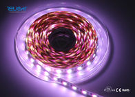 IP20 Addressable 12V Ws2818B 5050 RGB LED Strip 120 Degree Viewing Angle
